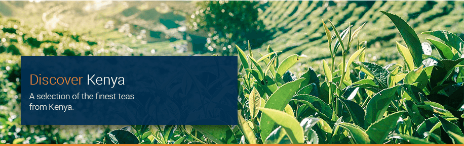Discover Tea from Kenya