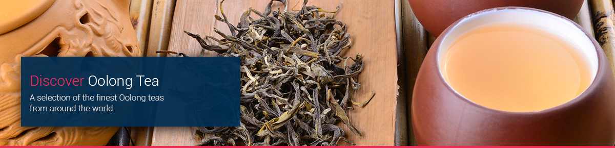 Discover Oolong Tea