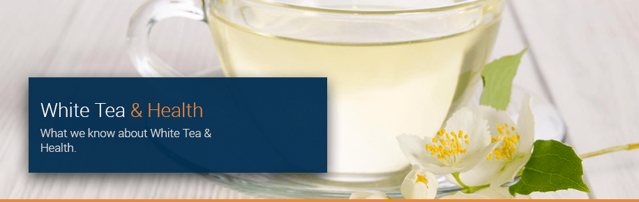 White Tea & Health